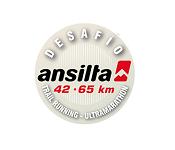 resumen_Desafio_ansilta_2017